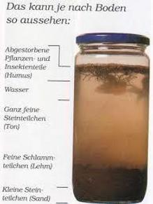 Schlämmprobe_2.png