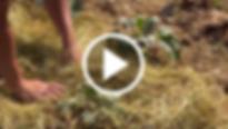 Bildschirmfoto 2019-09-05 um 140315.png