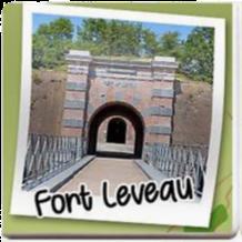 fève fort Leveau
