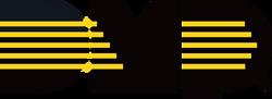 Black and Gold DMP logo