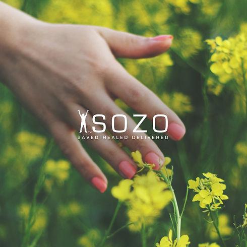Sozo_iborg_1440x7401.jpg