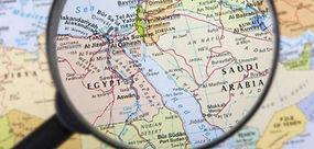 Medio Oriente e Covid