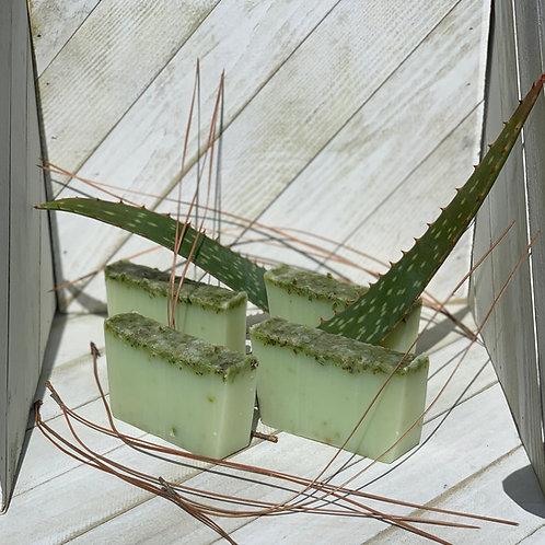 Aloe therapeutic