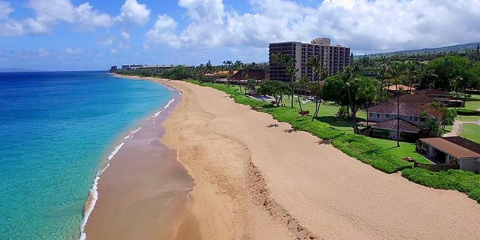 Brainspotting Phase 2 Hawaii