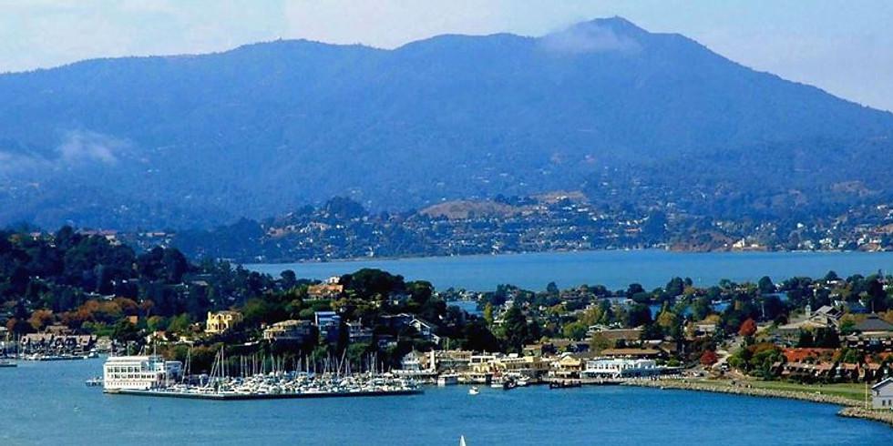 Brainspotting Phase 1 - Marin County