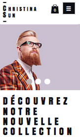 Boutiques en Ligne website templates – Magasin opticien