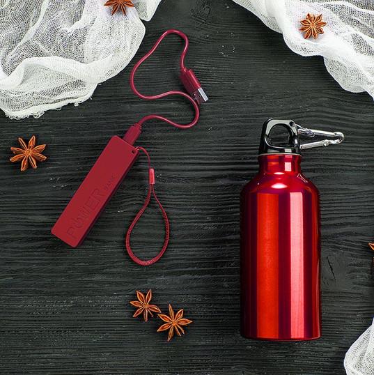 Набор подарочный ENERGYHINT: зарядное устройство, бутылка