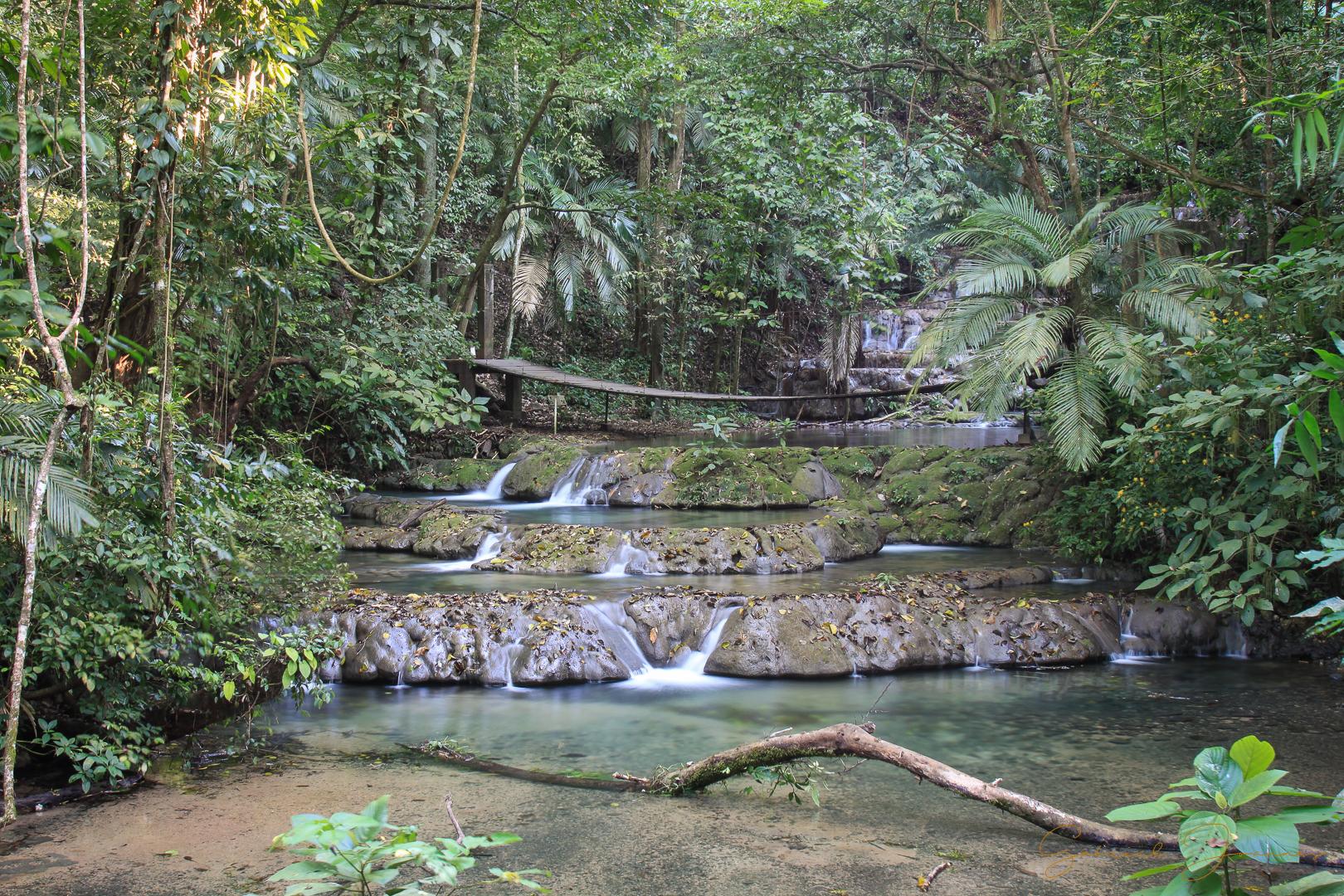 Cascade au milieu de la jungle