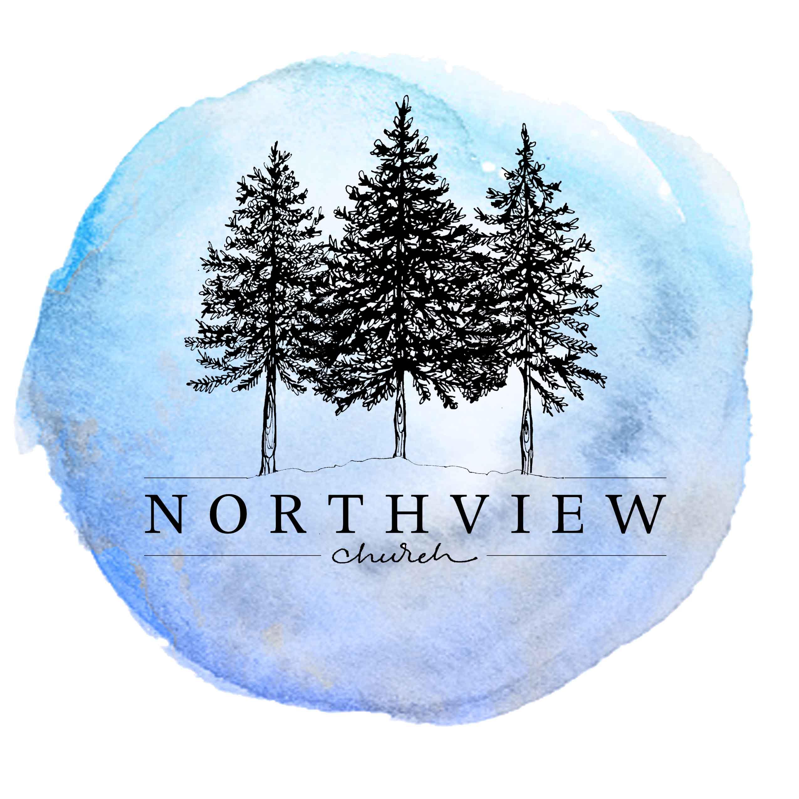 NORTHVIEW LOGO