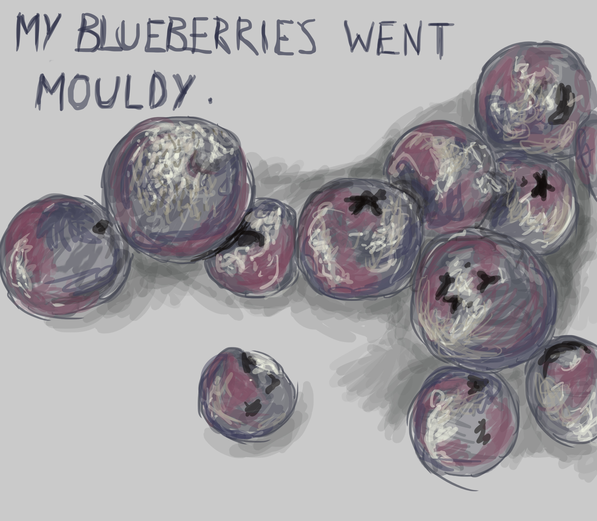 mouldy blueberries