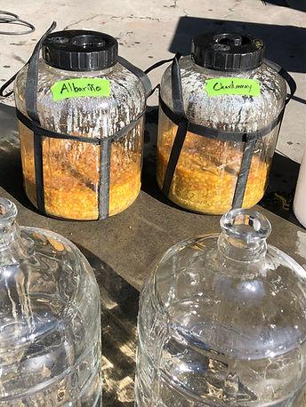 native fermentation