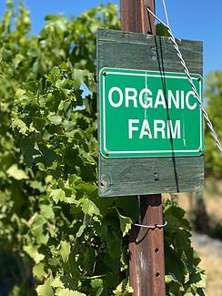 organic practices