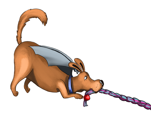 dog & rope cropped.png