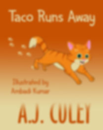 Taco Runs Away KINDLE cover.jpg