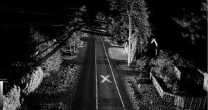 LiDAR scan of roadway with road lines, power line and trees