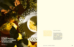 cookbook pana cotta spread design