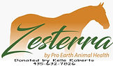 Zesterra for Classic Flyer_edited-1.jpg