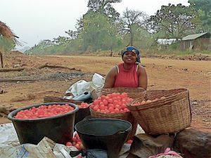 Ghana woman selling tomatoes