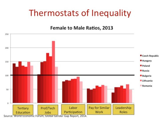 "The way we normally approach women's economic situation is by trying to read an array of ""thermostats of Inequality."" I am suggesting we need something more fully-fleshed."