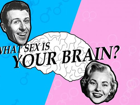 Brain Bigots:  Pushing Back on Junk Science