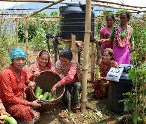 Solar-powered drip irrigation in Nepal Photo: Bimala Rai Colavito, USAID