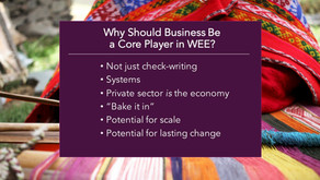 APEC Women and the Economy Forum 2018:  the GBC4WEE