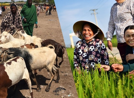Challenges & Opportunities for Women's Economic Empowerment in Agriculture