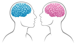 Do Brain Differences Keep Women from Succeeding in Tech?  SAP, Part 2