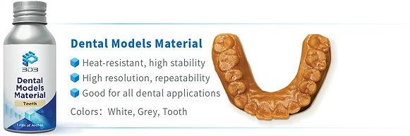 Dental Model.JPG