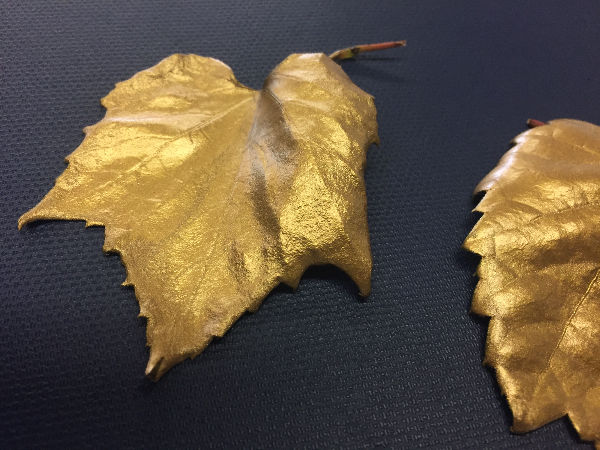 Gold Leaf 3_edited.jpg