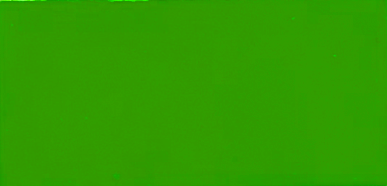 #607 - Signal Green (Fluorescent Powder)
