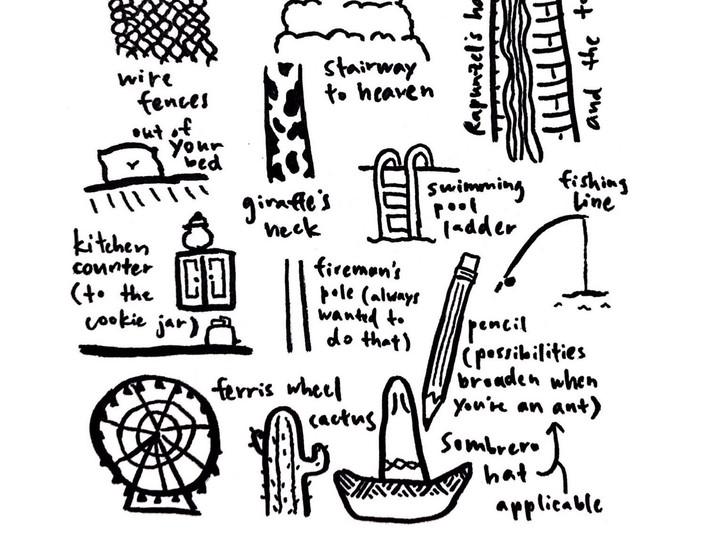 things to climb (for LUMC merch)