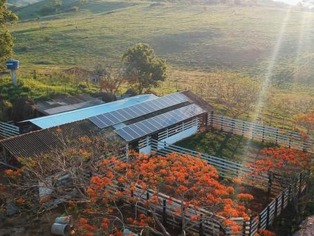 Energia Solar no seu Agronegócio