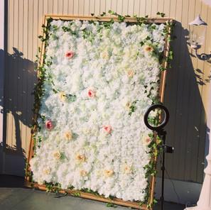 Romantic Rose Flower Wall