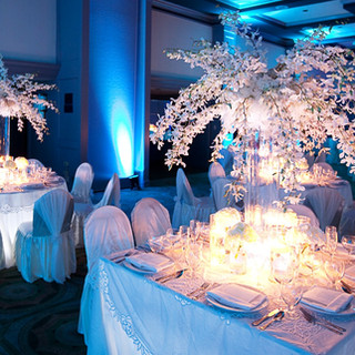 crystal tree & uplight rentals