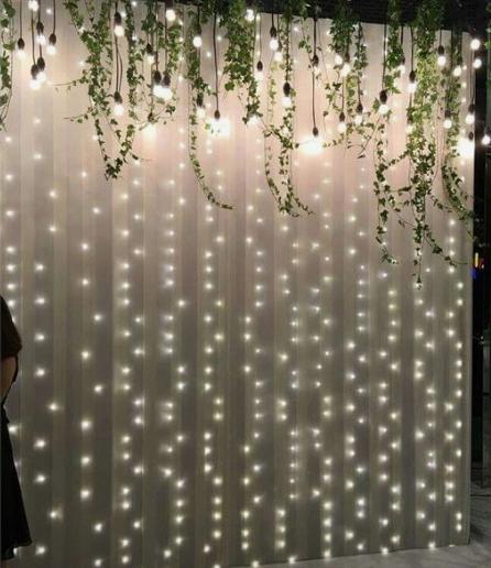 Light Curtain Backdrop RENTAL