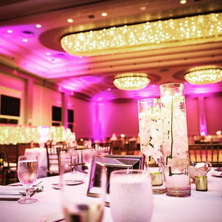 Pink Uplighting Rentals