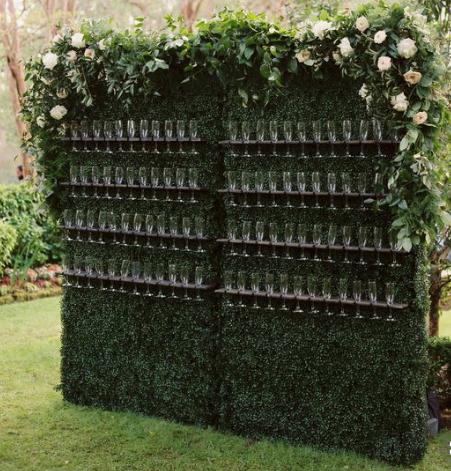 Hedge Champagne Wall