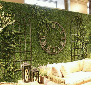 Green Hedge Rental