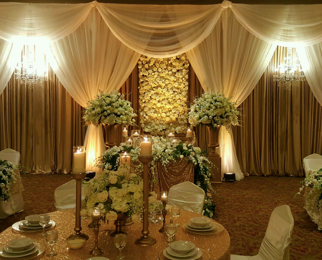 Elegant Fabric Backdrop Rentals