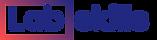 Labskill_logo.png