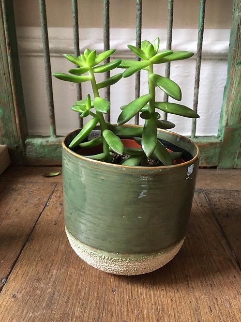 Bloempot  Sinato groen S