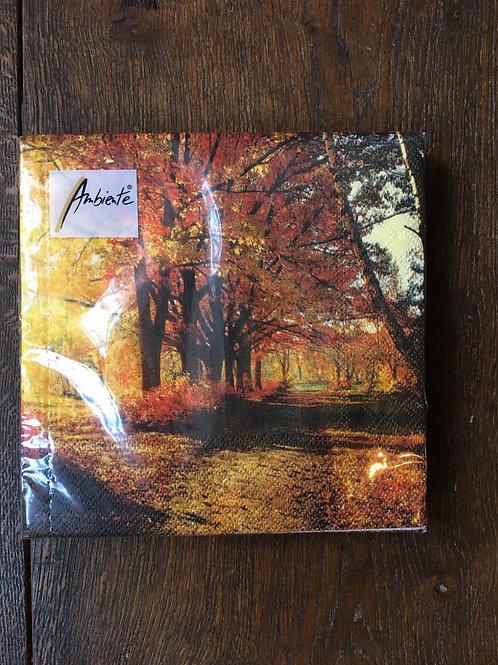 Servet Autumn Park