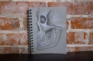 Scull Study on Grey
