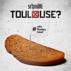 Schmidti - Toulouse?
