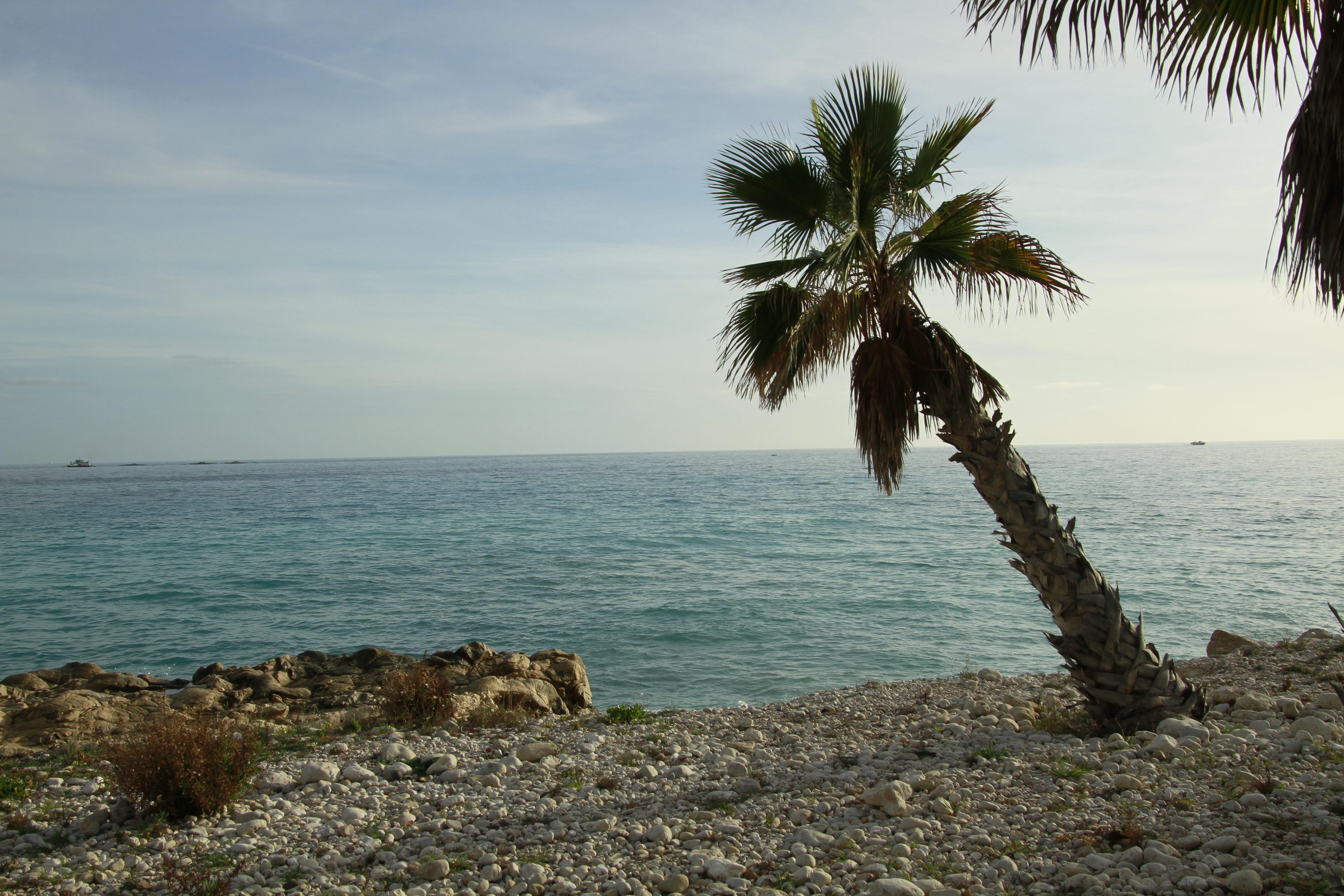 Playa de los Estudiantes, La Vila