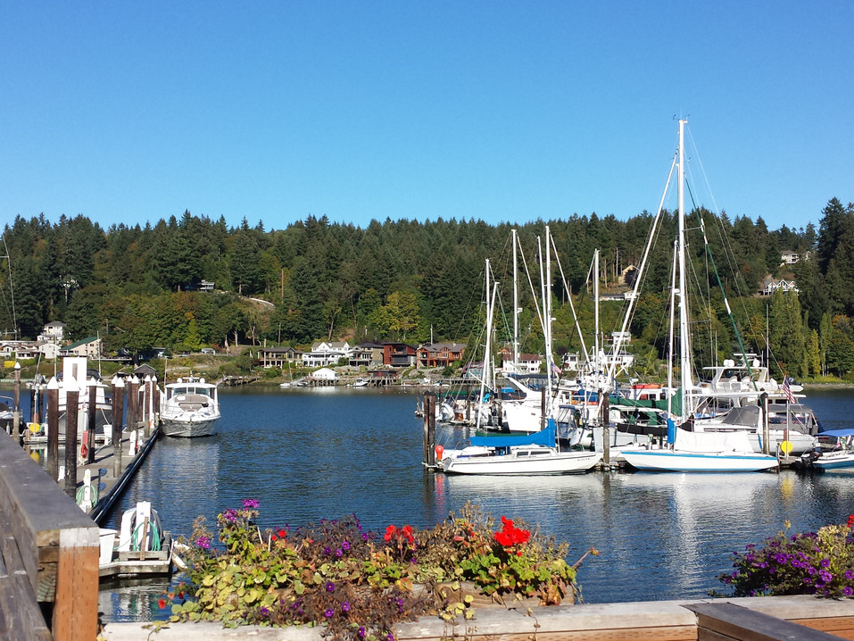 Summer Day in the Harbor
