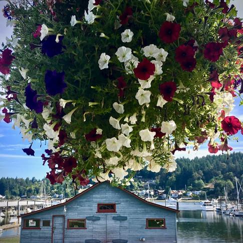 Flower Basket & historic Skansie Net Shed