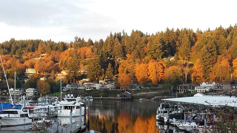 Autumn in the Harbor