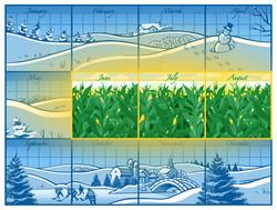 Short Minnesota growing season